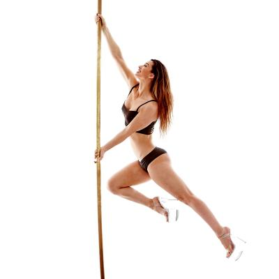 Level 1 Technique Pole Class